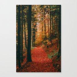 an ultralight beam Canvas Print