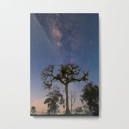 Milky Way over a Ceiba tree Metal Print
