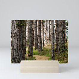 Path to the Sea (Point Lobos) Mini Art Print