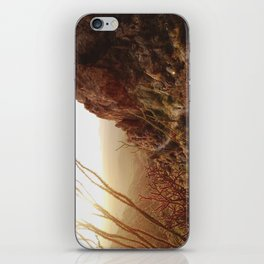 Desert Sunset Trail iPhone Skin