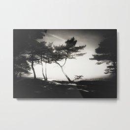 island XXXVII Metal Print