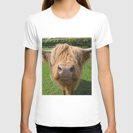 Highland cow nose T-shirt