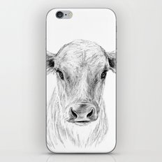Moo ::  A Young Jersey Cow iPhone & iPod Skin