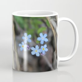 Five Forget-Me-Nots Coffee Mug