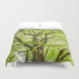 Beech Tree Duvet Cover