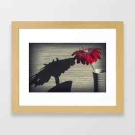 Gerbera Flower Framed Art Print
