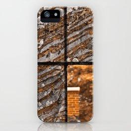 Petrified Window iPhone Case