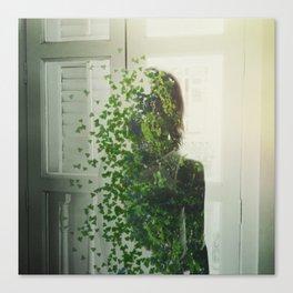 disintergrated nature Canvas Print