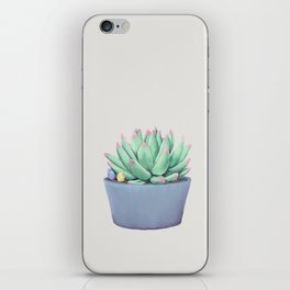 Small Potted Succulent with Crystals iPhone Skin