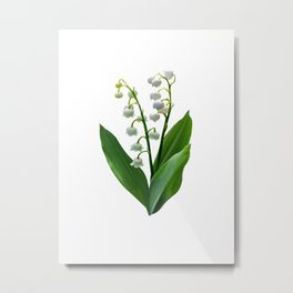 Lily of the Valley Floweret Metal Print