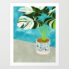 Variegated Monstera #tropical #painting #nature Art Print