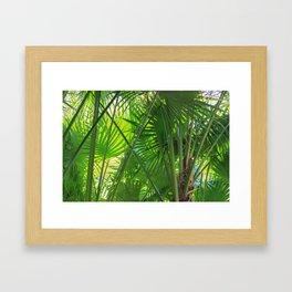 Sunny Tropical Palms 2 Framed Art Print