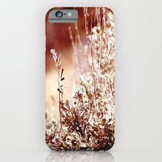 Beguiling iPhone 6s Slim Case