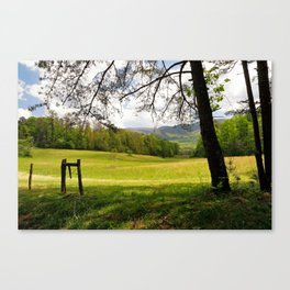 Springtime in Tennessee Canvas Print
