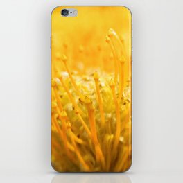 The Study of Yellow iPhone Skin