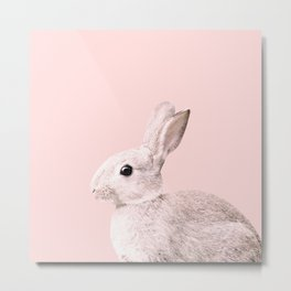 Blush Baby Bunny #1 #decor #art #society6 Metal Print