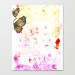 butterfly's breathe Canvas Print