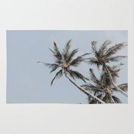palm trees iv Rug