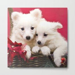 Puppies from the North Pole Metal Print