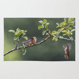 Rufous Hummingbird at Large, No. 2 Rug