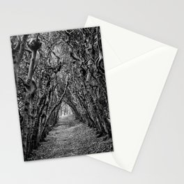 Beech tunnel Stationery Cards