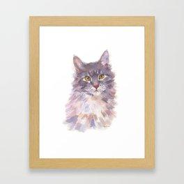 Tawny Blue Tabby Framed Art Print