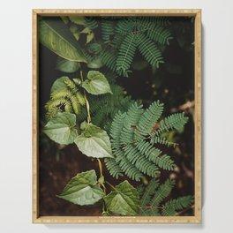 Dark Botanical 01 | Travel Photography | Bali Series Serving Tray