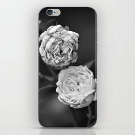 A Pair of Roses iPhone Skin