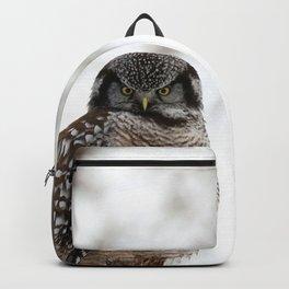 Aura Translator Backpack