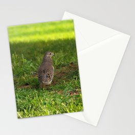 Beautiful Mourning Stationery Cards