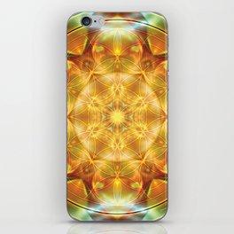Flower of Life Mandalas 16 iPhone Skin