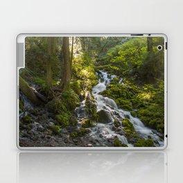 Waterfall Morning Landscape Laptop & iPad Skin