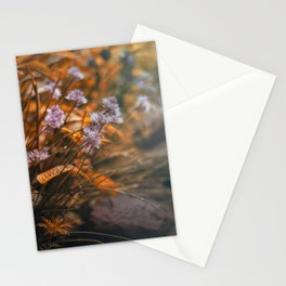 Misty Morning Behind The Garden Wall Stationery Cards