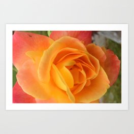 Cold Day, Warm Colors Art Print