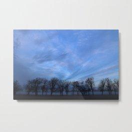 Trees In Fog Metal Print
