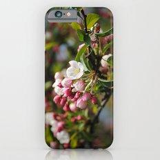 Apfelblüten  Slim Case iPhone 6s