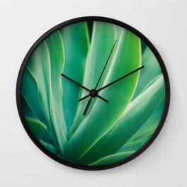 Agave on a Pretty Day Wall Clock