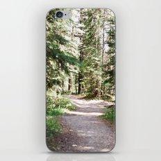 Fish Creek iPhone & iPod Skin