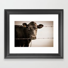 How Now, Brown Cow? Framed Art Print