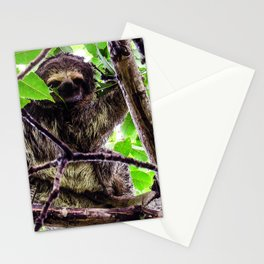 A little perezoso Stationery Cards