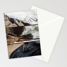 Composition of Wings Stationery Cards