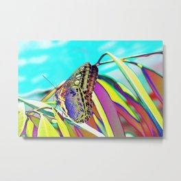 Sweet Butterfly Metal Print