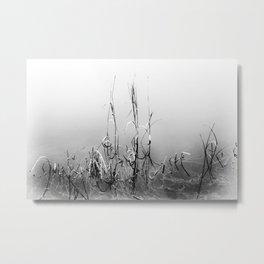 Echoes Of Reeds 1 Metal Print