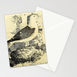 Lesser black-backed Gull, larus fuscus25 Stationery Cards