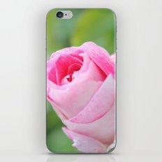 Vintage Flower Bud iPhone & iPod Skin