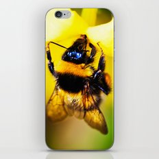 Bee on a Jasmine iPhone & iPod Skin