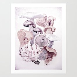 Mushroom Medley Art Print