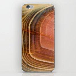 Botswana agate iPhone Skin