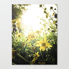 LUV IN THE SUN Canvas Print