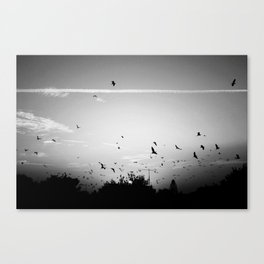 Migrating birds #02 Canvas Print